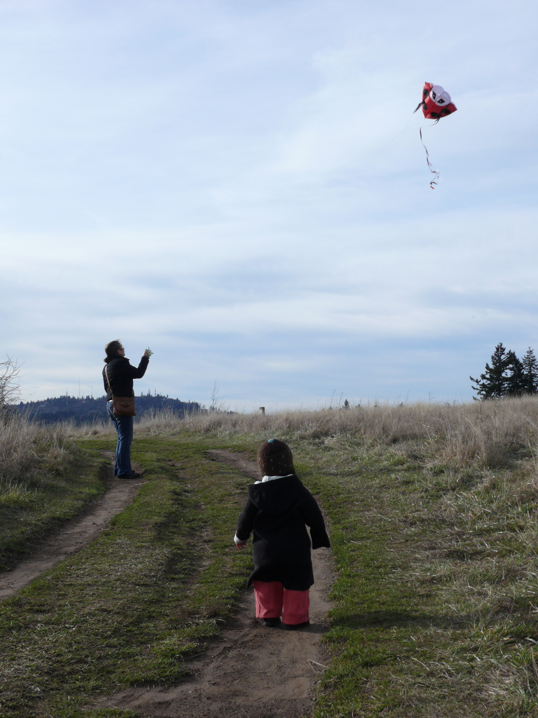 The top of the butte is large, flat and without much trees, hence perfect conditions for flying kites.