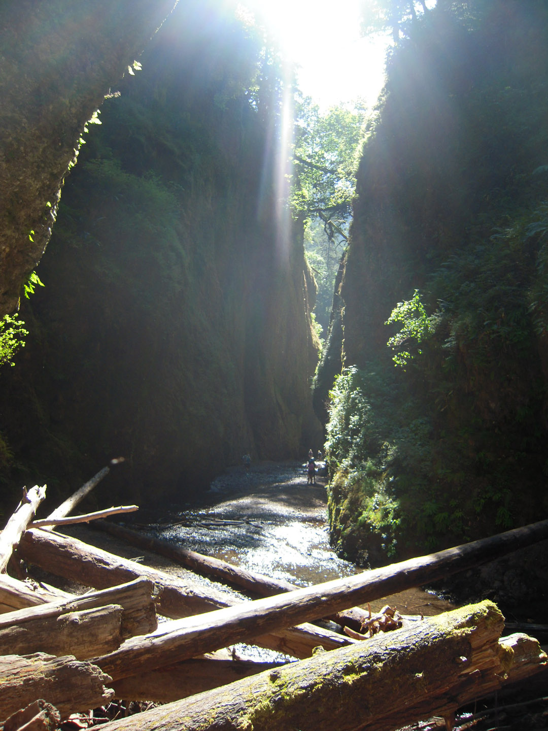 The Oneonta Gorge.