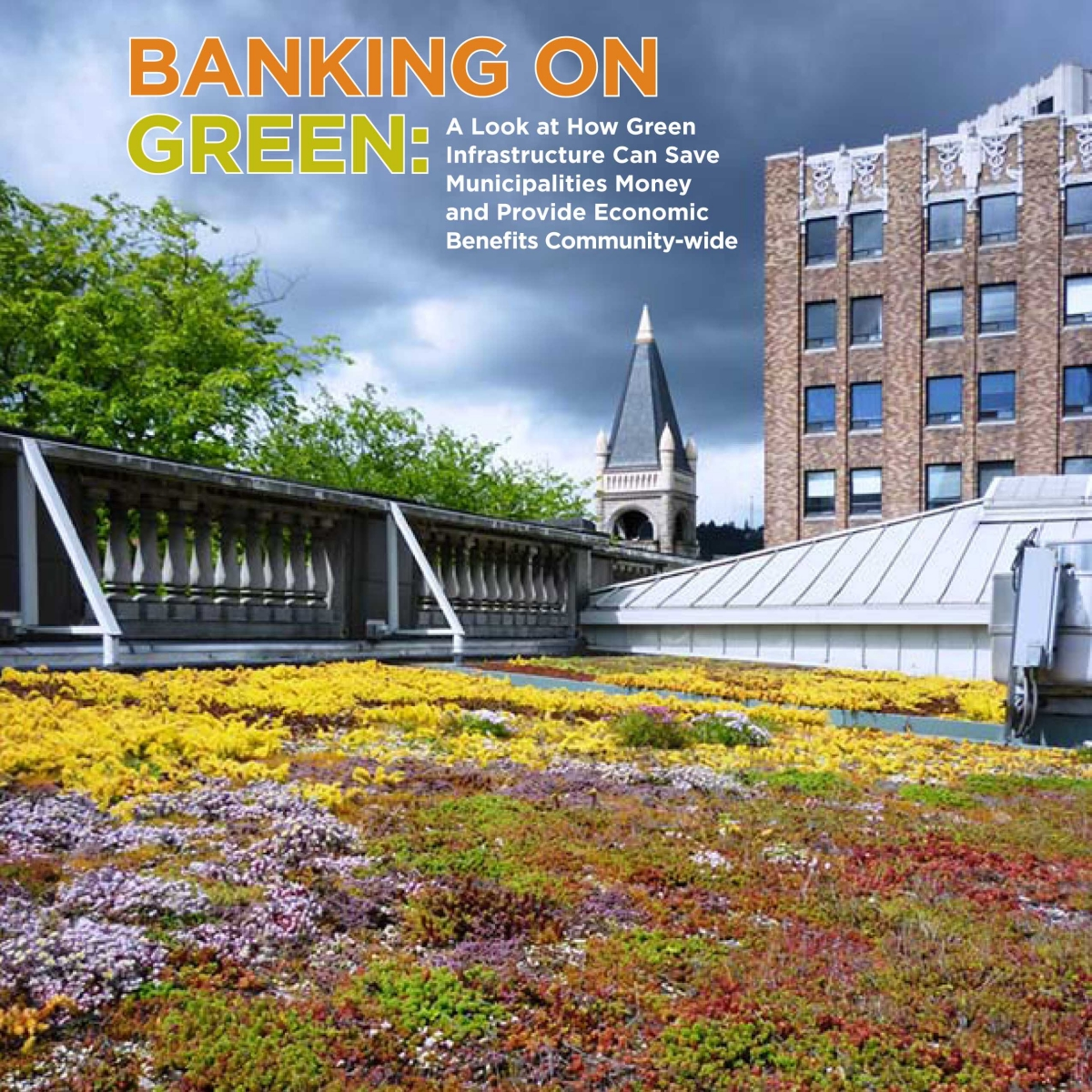 Banking On Green Infrastructure Report