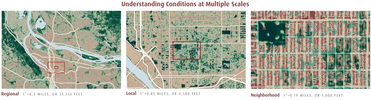 Understanding Landscape Conditions at Multiple Scales