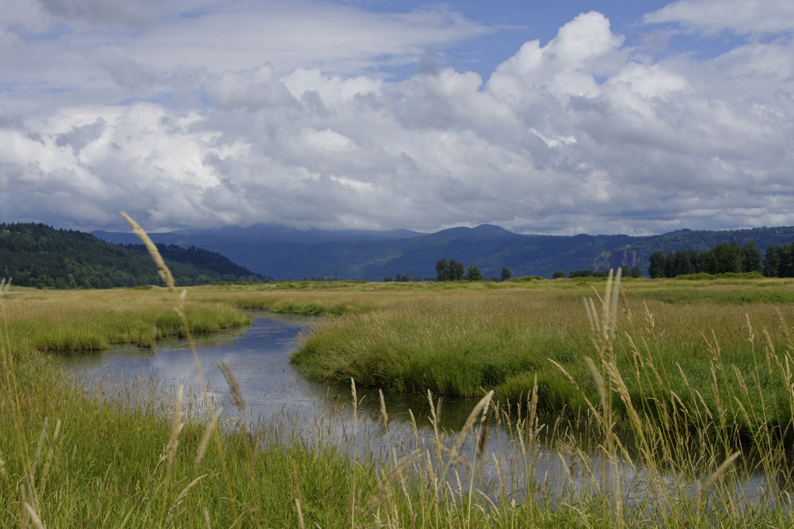 The beautiful and vast landscape of the refuge.