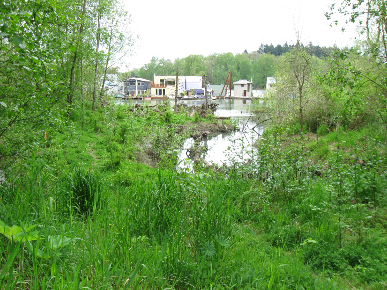 Willamette Moorage Park | The Intertwine