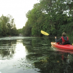 Paddling the slough