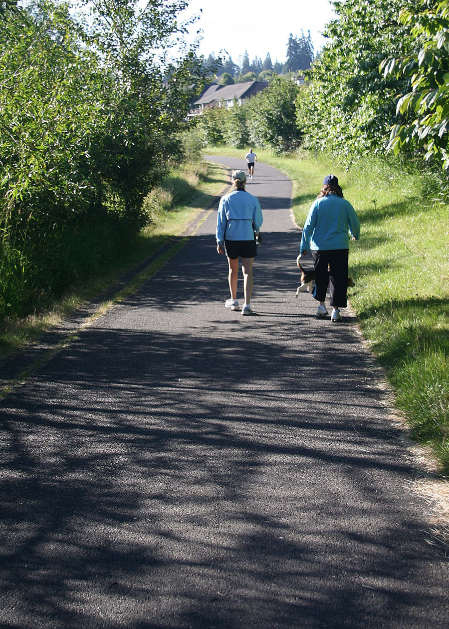 The paved trail along Salmon Creek